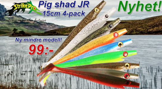 Pig Shad JR 15cm
