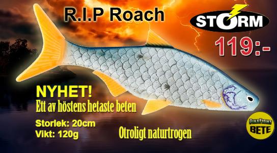 R.I.P Roach
