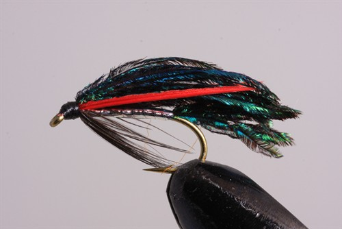 peacockalexandra