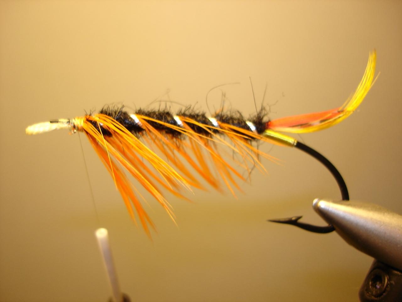 Black & Orange Del 1