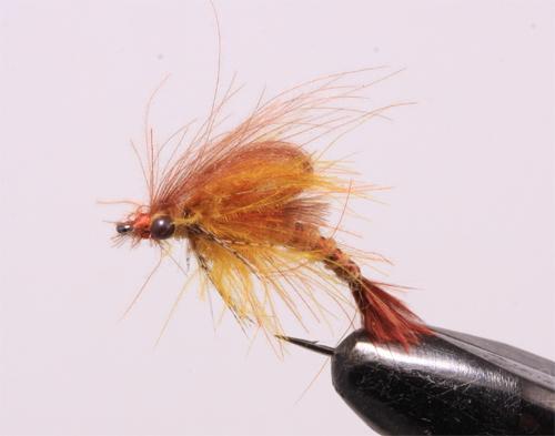Mayfly-Kläckare